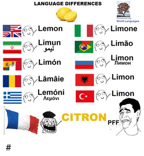 Language Differences Meme - funny world languages memes of 2017 on me me screeching