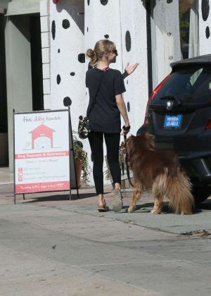 dog house los angeles amanda seyfried in spandex at the dog house for daycare in los angeles