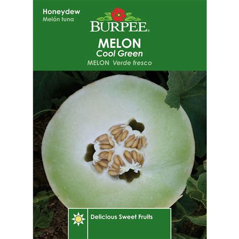 cool green products burpee melon cool green seed 66253 the home depot