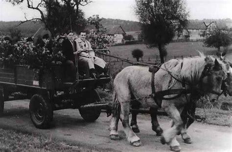 pferd und wagen fotos atzenhausen