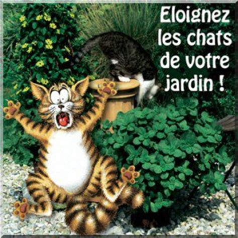 Supérieur Repulsif Pour Chat Jardin #4: 2863306380_2.jpg