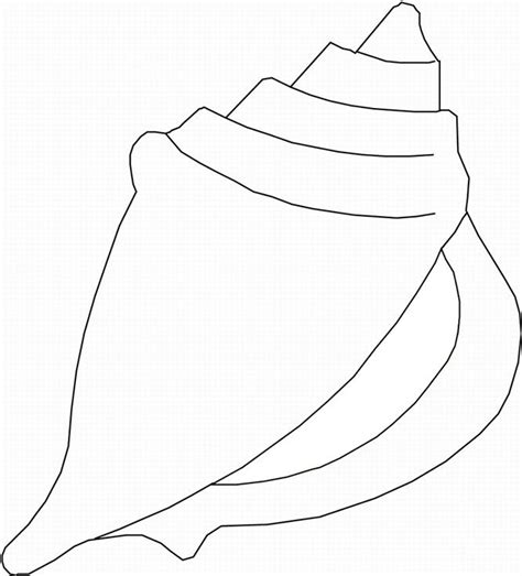 seashell coloring pages preschool printable pictures of sea shells seashell coloring page