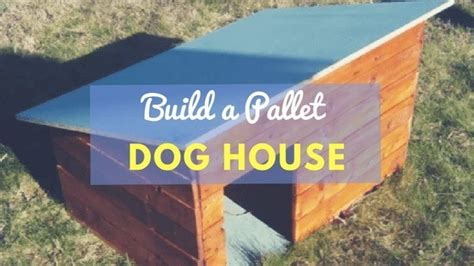 how to build a dog house out of pallets how to build a dog house out of pallets step by step tutorial