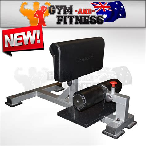 bench machine sissy squat bench machine force usa weight rack leg bar