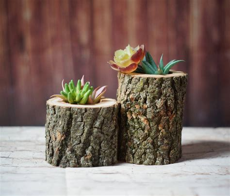 succulent holder wood succulent holder log planter natural wood planter