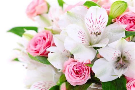 imagenes flores astromelias bello ramo con astromelias y rosas 36842