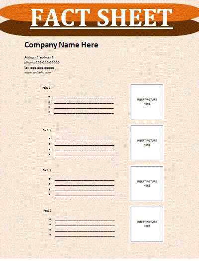 fact card template fact sheet template free sheet templates