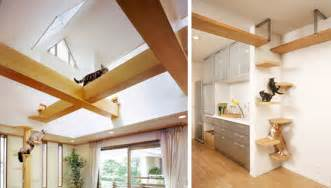 Cat Friendly Home Design by Unbelievable Cat Friendly House Design From Japan
