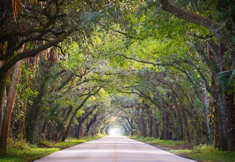scenic highways martin grade scenic highway florida scenic highways