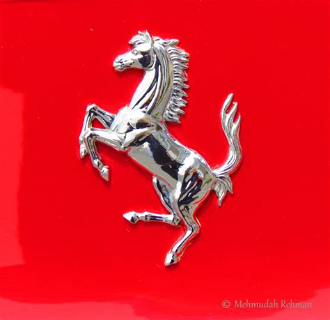 ferrari horse logo ferrari horse logo www imgkid com the image kid has it