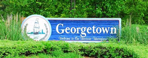 houses for sale georgetown sc georgetown south carolina real estate homes for sale