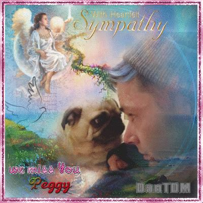 peggy dantdm pug my condolences to dantdm for the loss of his beloved pug peggy picture 136510247