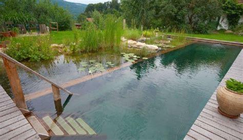 natural swimming pool natural swimming pools natural landscaping gardening