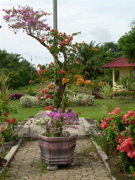 Pupuk Untuk Menyuburkan Bunga tanaman hias