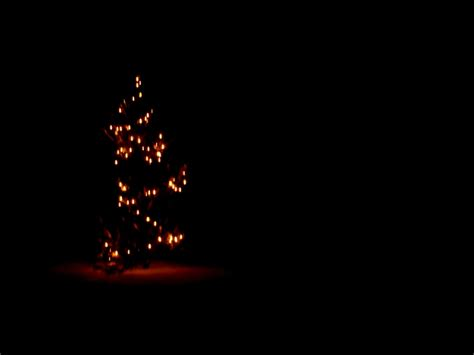 merry christmas   silent nights  cold  dark  love adventure