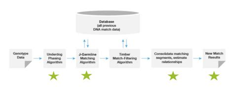 dna pattern matching algorithm the science behind a more precise dna matching algorithm