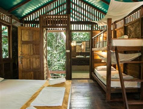 our jungle house our jungle house updated 2018 prices hotel reviews khao sok national park