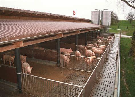 schweinestall bauen maststall natureline