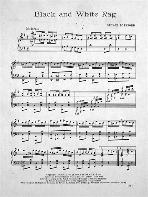 170.028 - Black and White. Rag. | Levy Music Collection