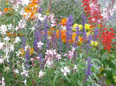 36 Best Images About Cape Cod Gardens On Pinterest Brewster Flower Garden