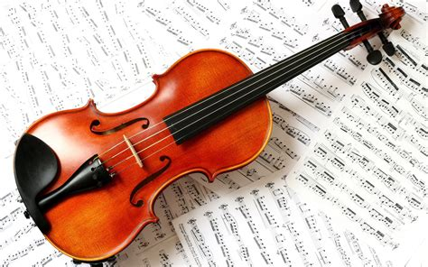 Suzuki Lessons Panther Post 187 Suzuki Violin Lessons Now Available