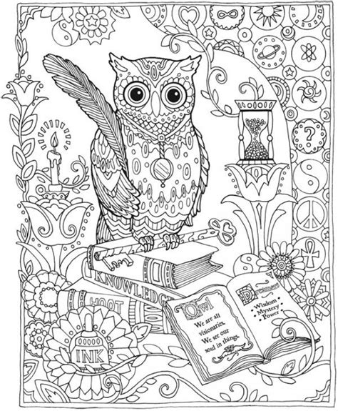 best 25 owl coloring pages ideas on pinterest