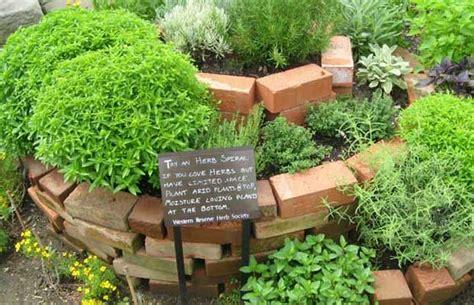 edible backyard edible weeds herbal medicine chest in your backyard the