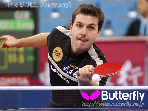 my table tennis pictures wallpaper butterfly alex table tennis