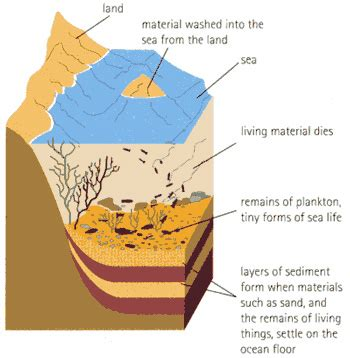 diagram of how sedimentary rocks are formed gc1vjc0 my sediments exactly earthcache in california