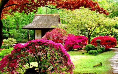 Pretty Flower Garden Lush Greenery Pictures Beautiful Gardens Wonderwordz