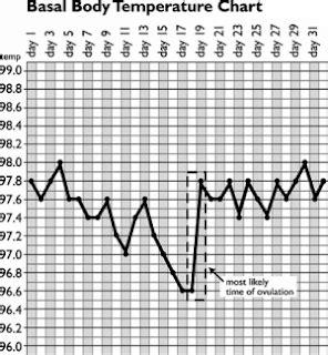 Termometer Suhu Basal Tubuh kesehatan mengenal suhu tubuh