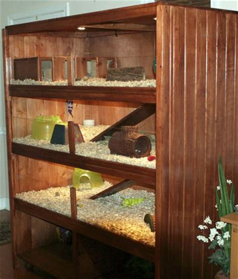Search The Upstairs Drawers Of A House by 17 Best Images About Guinea Pig Cages On Cavy