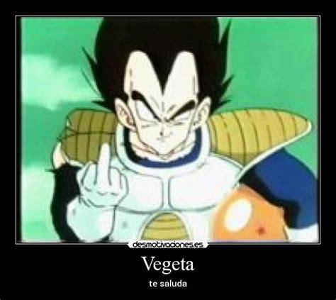 Memes De Vegeta - vegeta desmotivaciones