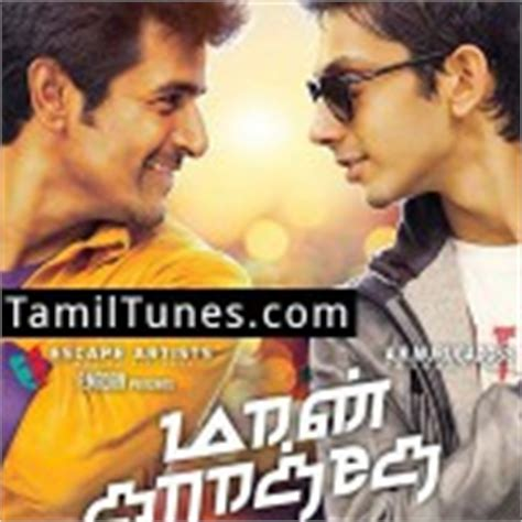 theme music maan karate tamil songs downloads darling dambakku song download