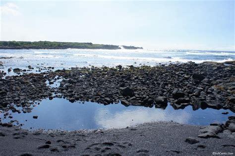 punaluu beach punalu u black sand beach park inacents com