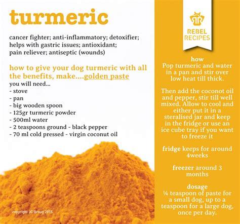 golden paste for dogs turmeric golden paste recipe