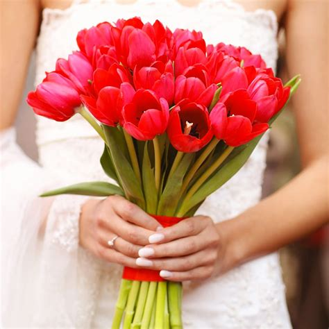 fiori simili alle calle bouquet invernali
