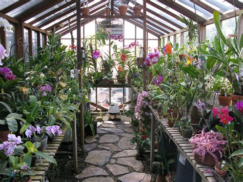 My Greenhouse #2 overview April 2008   orchid dude   Flickr