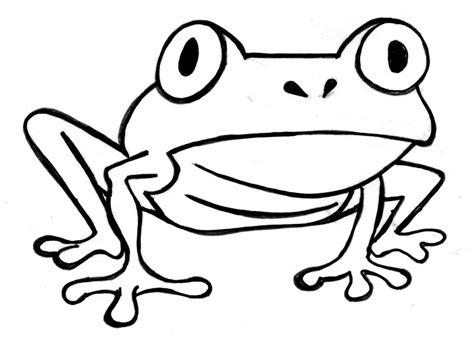 frog outline template frog outline clipart best
