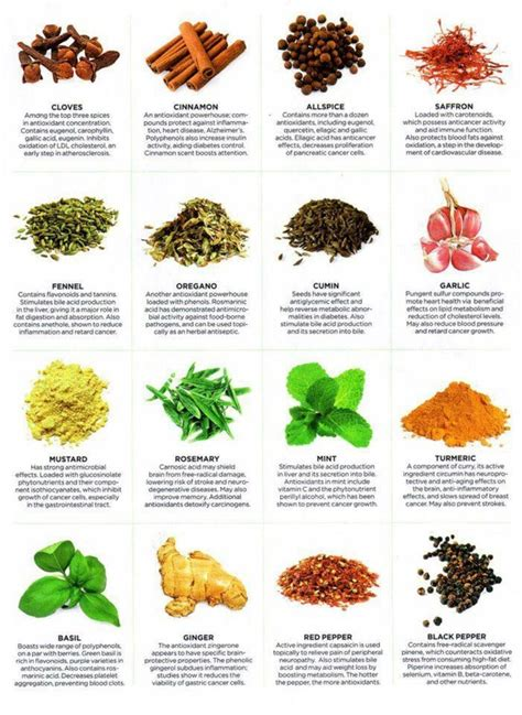 Healing Home Foods by Diet Infographic Healing Herbs And Spices