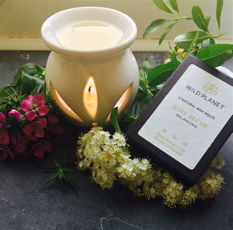 Aromatheraphy Essential Lemongrass Donna Chang Original aromatherapy burner and six luxury wax melts by