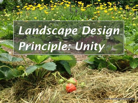 unity farm layout landscape design principle unity tenth acre farm