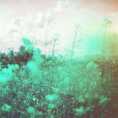 Simple Flower Swarovski For S3 S4 S5 S6 Edge Samsung Lenovo Lg papers co android wallpaper mw22 nature green flower bokeh happy flare