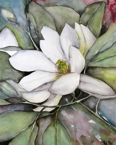 pin galery magnolias watercolour on