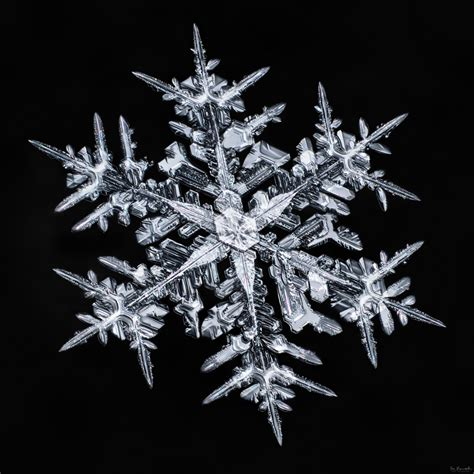 don komarechka quot the snowflake quot ultra high resolution