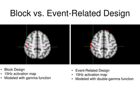Block Design Vs Event Related | ppt mark wheeler destiny miller carly demopoulos kyle