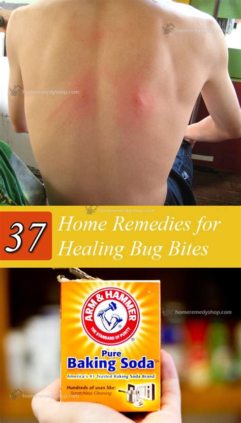 pin by tarisha pruitt boyd on home health remedies