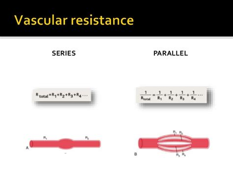 resistance in series and parallel blood flow physio presentation pressure flow and resistance
