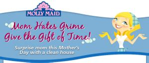 Melting Pot Gift Card Costco - molly maid mom hates grime give the gift of time sweepstakes win a 500 molly