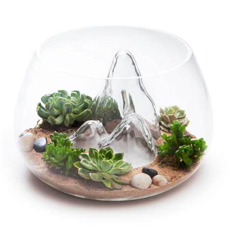 Terrarium Planter by Award Winning 12 7 Quot Glass Terrarium Indoor Garden Nova68